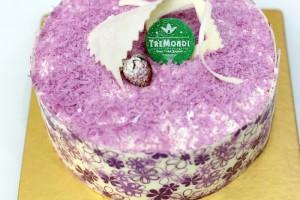 tremondi-8