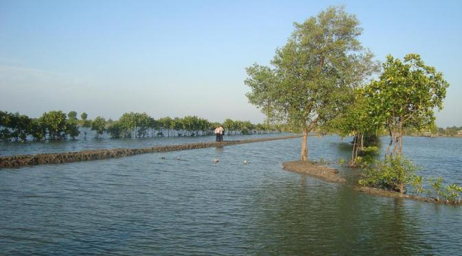 Wisata Alam Tersembunyi di Bekasi